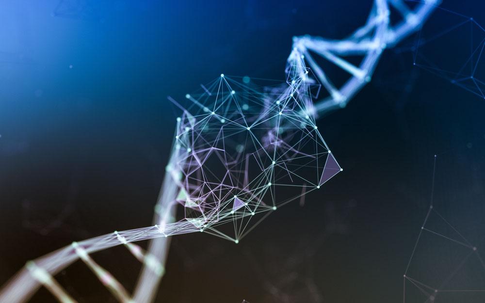 Test Genetici Predittivi